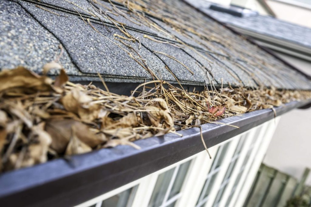 Gutter Cleaning in Middletown NJ: What's the Best Method?