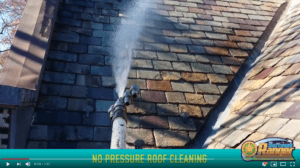 Soft Wash Roof Cleaning Clifton NJ